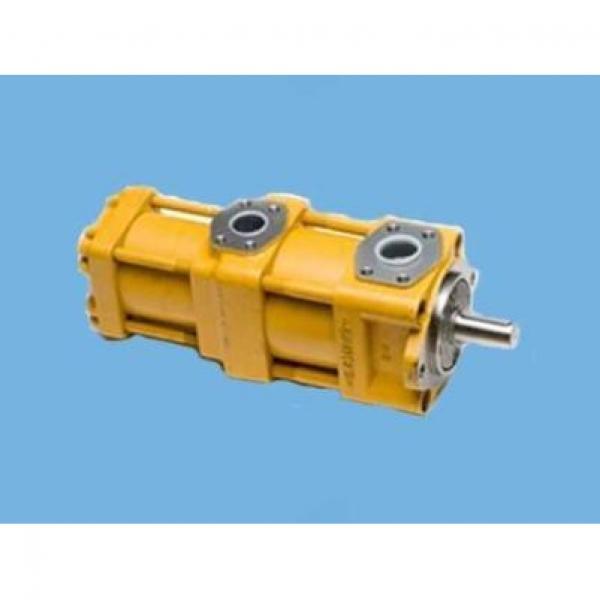 QT2323-6.3-6.3MN-S1162-A Αντλία καυτής πώλησης #2 image